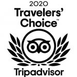 traveller choice